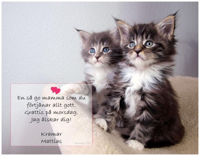 grattis mamma på mors dag Grattis alla mammor    EyesX  Mattias Tengblad Online grattis mamma på mors dag